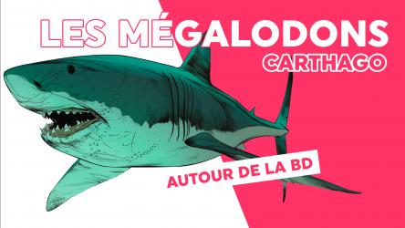 Biographie d'un mégalodon 🦈